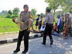 Kapolda NTB Angkat Sendiri Korban Kecelakaan